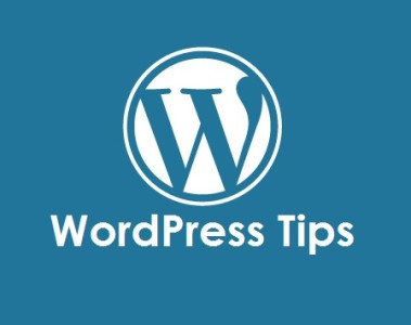 5 Sites For WordPress Tips